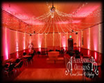 Fairy Light Canopy - Warm White Fairy Lights Essex